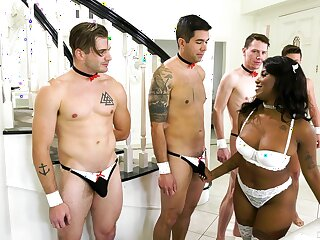 A group of white lovers dotes on alluring ebony Daizy Cooper